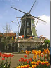 Lynden Washington Dutch Windmill in Whatcom County