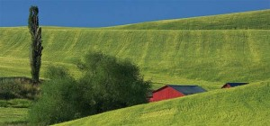 Tours in the Palouse