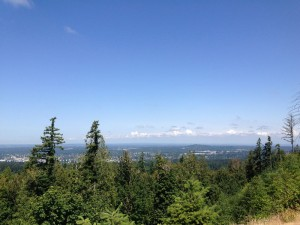Bellingham Washington from Galbraith Mountain