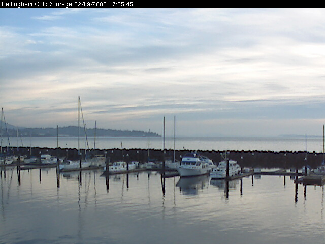 Bellingham Webcam