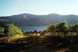 Chelan Ridge Winery