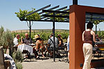 Tildio Winery Tasting Patio