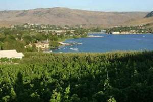Vin du Lac Winery Vinyards