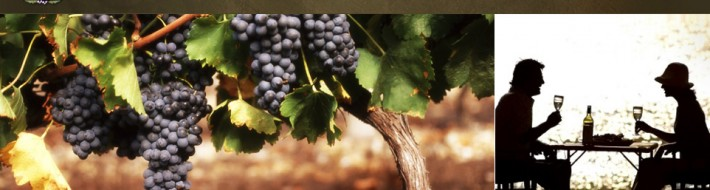 Washington State Wine Glossary and Wine Terms