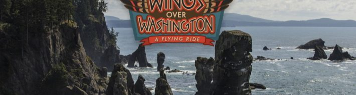 Wings Over Washington Flying Ride in Seattle
