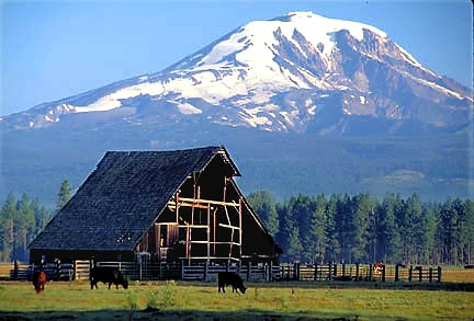 Washington Volcanoes Mount Rainier